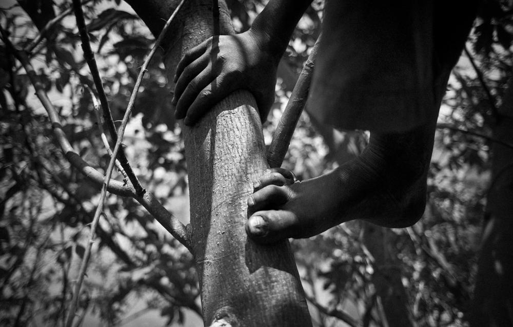 La raison de l'arbre-Antananarive-002
